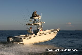 picture of boat used for cobia and false albacore